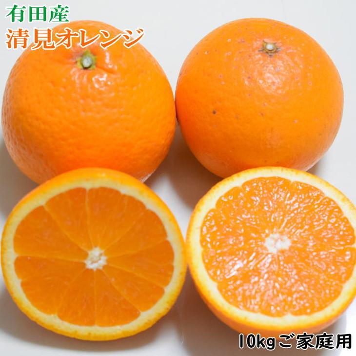 【ふるさと納税】有田産清見オレンジ10kg(M~3Lサイズおまかせ)ご家庭用※2021年2月上旬~3月下旬頃に順次発送予定