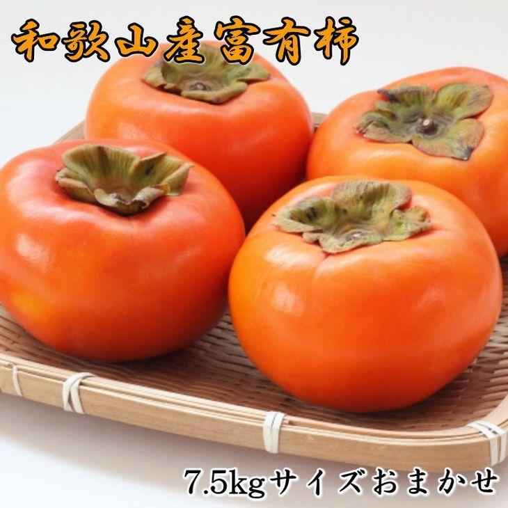 肉厚で濃厚な甘さとジューシーな和歌山産富有柿です。 【ふるさと納税】和歌山産富有柿約7.5kg(L~2Lサイズおまかせ) ※2021年11月上旬~2021年12月上旬頃順次発送予定 ※着日指定不可