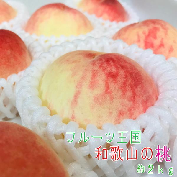 フルーツ王国和歌山の桃はジューシー感格別です みずみずしい果汁と甘い香りが口いっぱいに広がります ふるさと納税 夏の美味 和歌山の桃 爆買いセール フルーツ王国 激安 約2kg