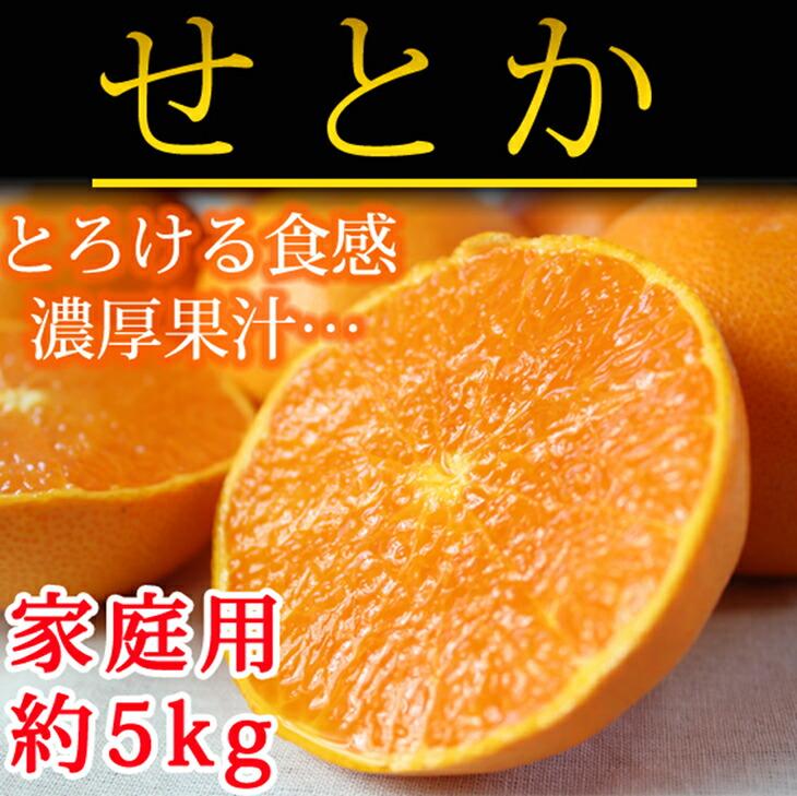 【ふるさと納税】■とろける食感!柑橘の大トロ せとか 約5kg(ご家庭用)※2020年2月上旬頃~2020年2月中旬頃に順次発送予定