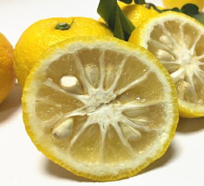 【ふるさと納税】■【国産】紀州和歌山の柚子 3kg※2020年11月上旬頃から順次発送予定