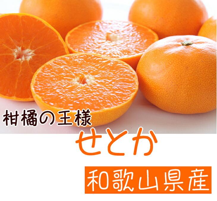 【ふるさと納税】■柑橘の王様 和歌山有田の濃厚せとか※2021年3月上旬頃より順次発送予定