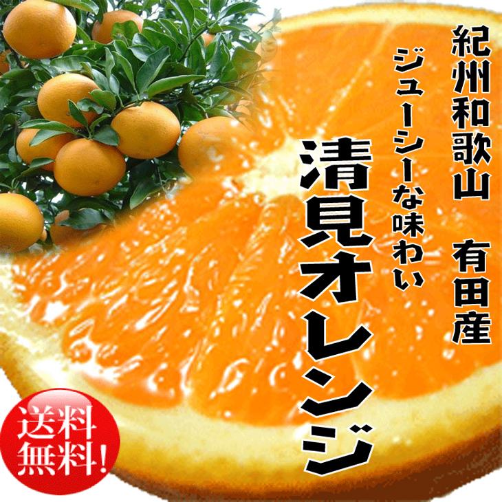 【ふるさと納税】春柑橘清見オレンジ8kg【3月上旬より順次発送】