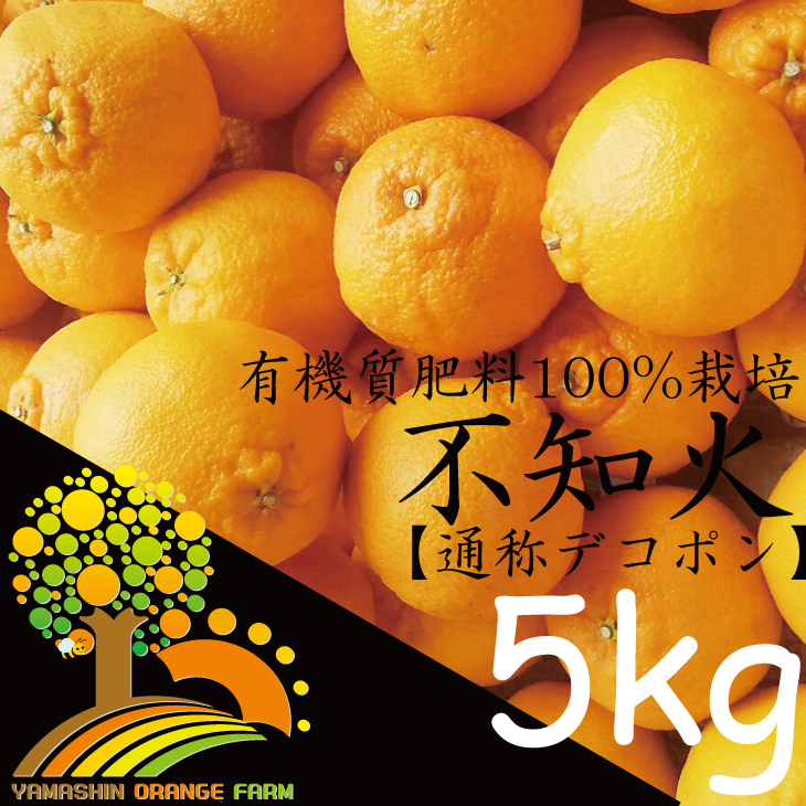 【ふるさと納税】春柑橘こだわりの不知火(通称デコポン)和歌山産家庭用5kg