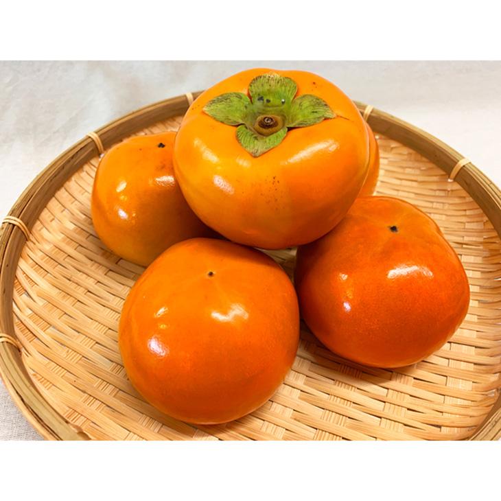 【ふるさと納税】和歌山秋の味覚 富有柿 約7.5kg