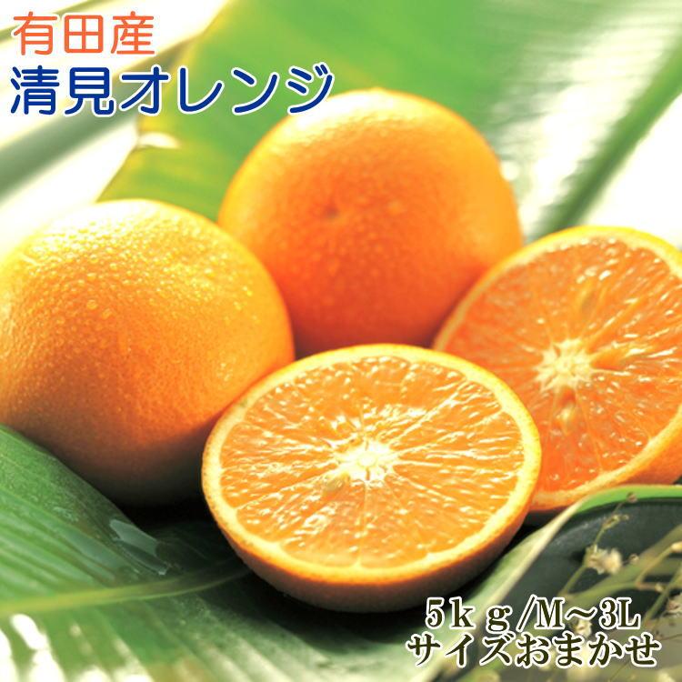【ふるさと納税】【濃厚】有田産清見オレンジ5kg(M~3Lサイズおまかせ)