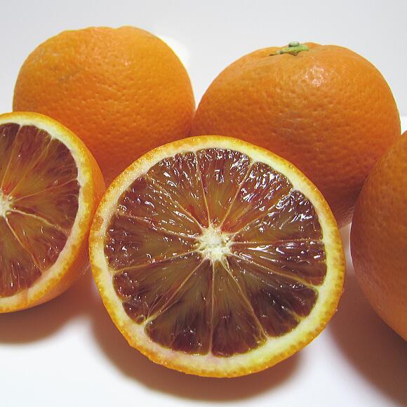 【ふるさと納税】【春の美味】【高級柑橘】濃厚ブラッドオレンジ