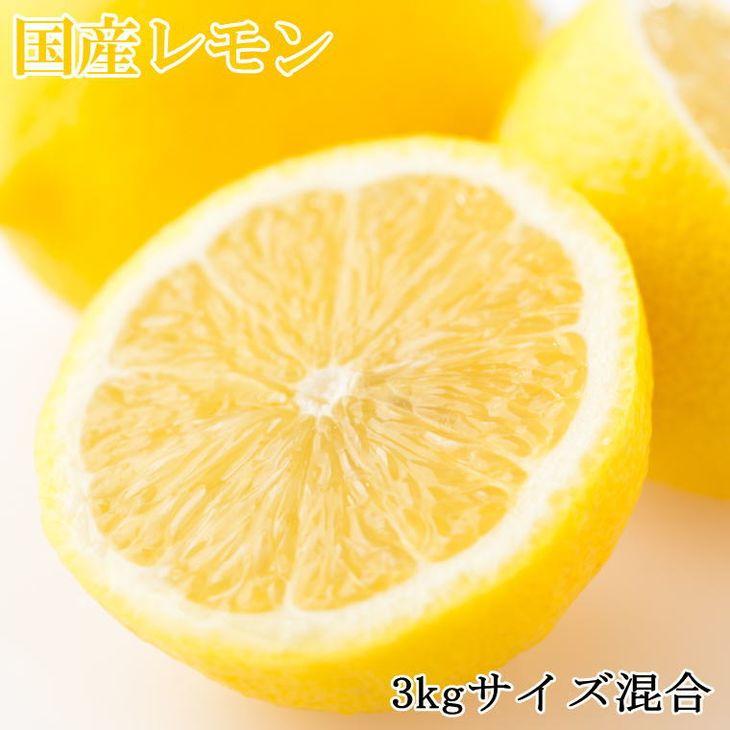 【ふるさと納税】【産直】和歌山産レモン約3kg(サイズ混合) ※2021年3月中旬~4月下旬に順次発送予定