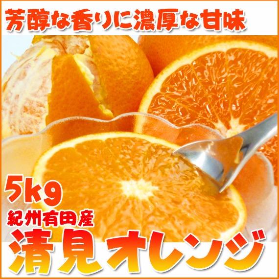 【ふるさと納税】とにかくジューシー清見オレンジ 5kg※2020年3月下旬~4月下旬頃に順次発送予定