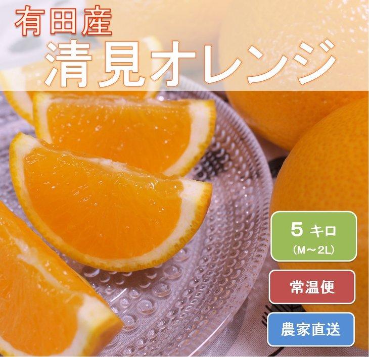 【ふるさと納税】和歌山県有田産 完熟清見オレンジ ひとつひとつ丁寧に厳選!生産者から直送※2020年3月中旬~4月下旬頃までに順次発送予定