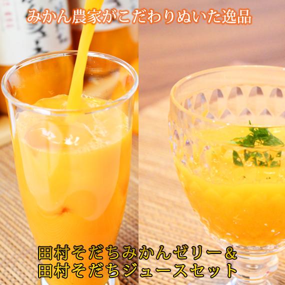 【ふるさと納税】田村そだちみかんゼリー&ジュースセット