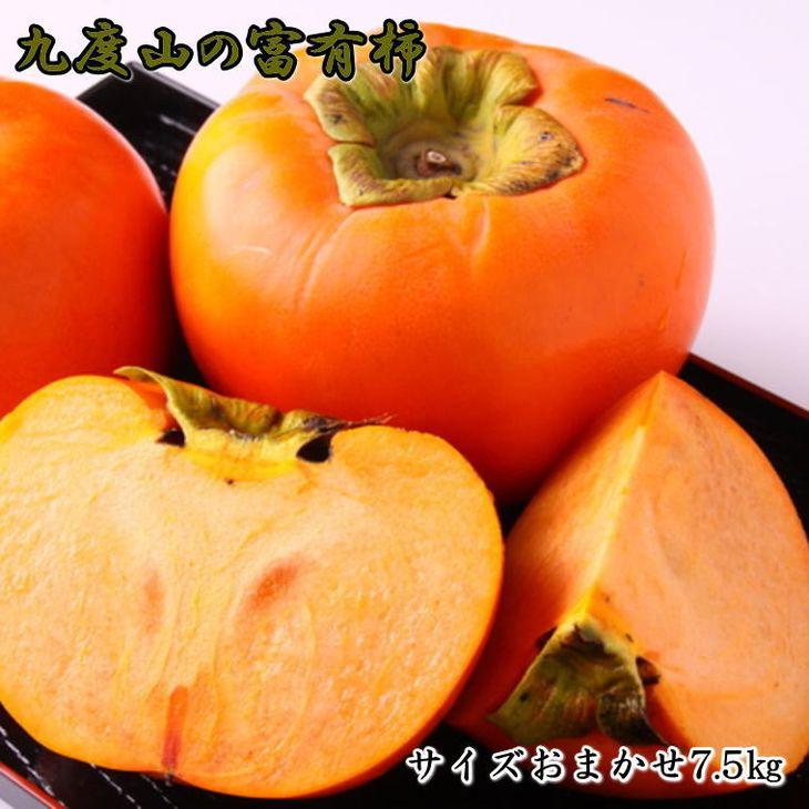 【ふるさと納税】[柿の名産地]九度山の富有柿約7.5kgサイズおまかせ ※2021年11月初旬頃~12月上旬頃に順次発送予定
