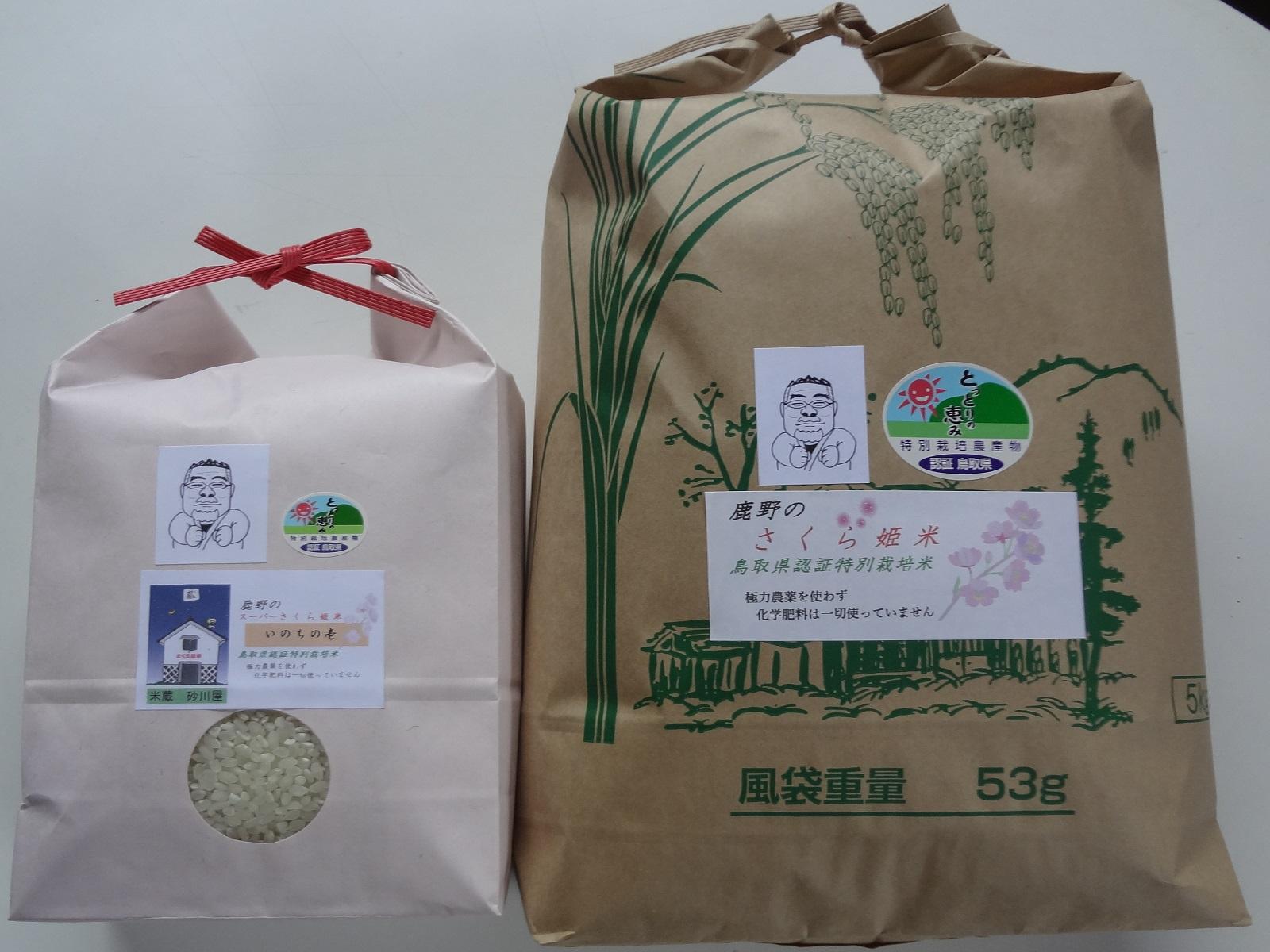 【ふるさと納税】091 おいしい米食べ比べセットB