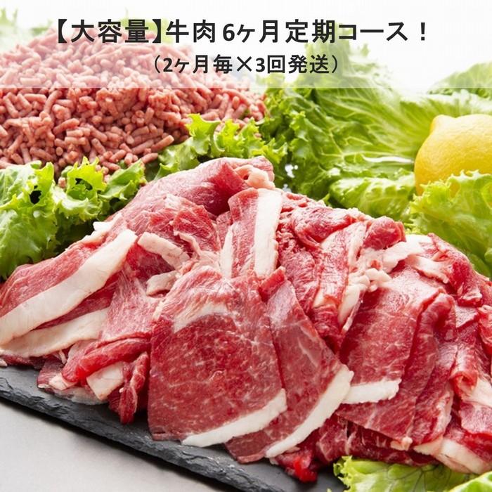 【ふるさと納税】Y007【乳質日本一!】鳥取県産牛大容量6ヶ月定期コース