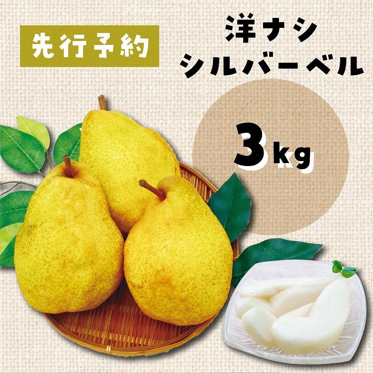 【ふるさと納税】【先行予約】洋ナシ シルバーベル(3kg)