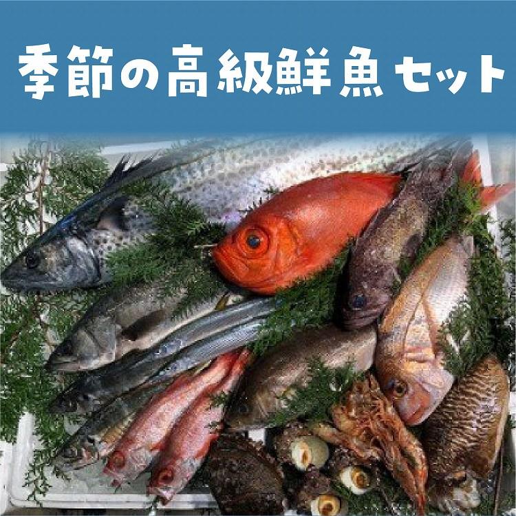 【ふるさと納税】季節の高級鮮魚セット