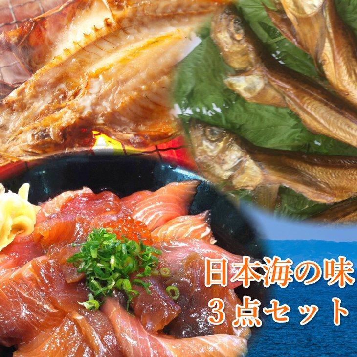 【ふるさと納税】日本海産 おまかせ海産品3点セット