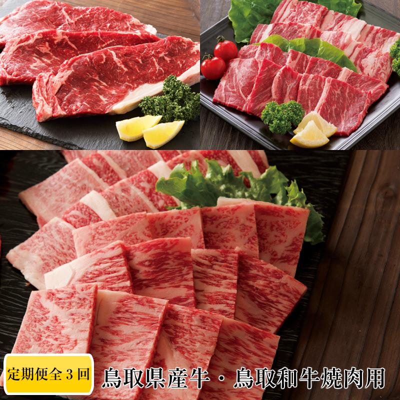 【ふるさと納税】TT01:鳥取牛&鳥取和牛堪能♪焼肉コース【3回お届けコース】
