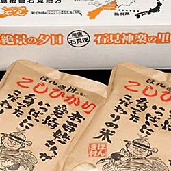 【ふるさと納税】49.ほんき村のこしひかり(10kg)