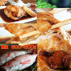 【ふるさと納税】351.海鮮グルメ生活シリーズ極上のどぐろ 選べる調理法