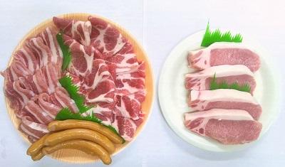 安全 安心 完売 美味しいお中元 922.浜田で生産されたケンボロー芙蓉ポーク焼き肉 ステーキ肉 ふるさと納税 当店限定販売