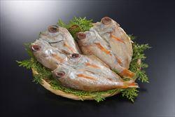 魚介類 魚貝類 ふるさと納税 1132.のどぐろの 全品最安値に挑戦 売却 奉書干し