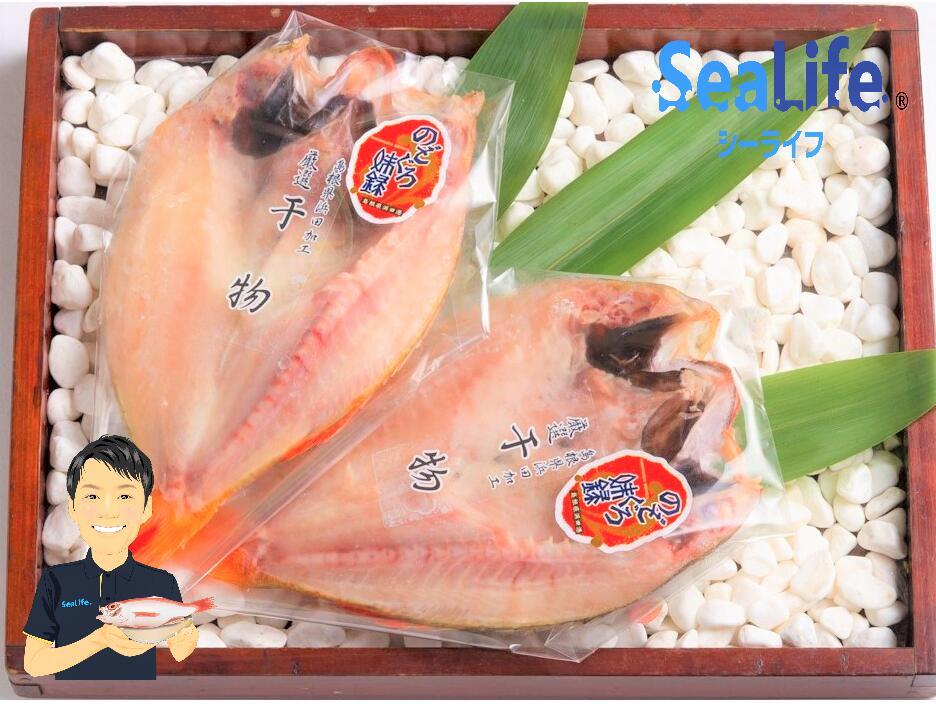 魚介類 魚貝類 ふるさと納税 1174.のどぐろ 干物 一夜干し 2枚 高級魚 大幅値下げランキング 無添加 約180gx2尾 中-大サイズ 超定番 浜田 島根 日本海産