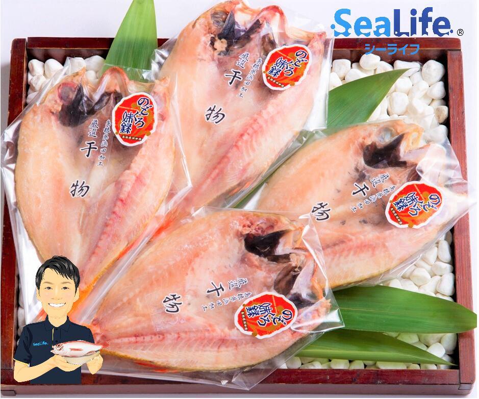 料理人も認める一級品 魚介類 ブランド品 魚貝類 お中元 ふるさと納税 937.のどぐろ 干物 一夜干し 中サイズ 無添加 約400g 島根 浜田 日本海産 3-4枚 倉庫 高級魚