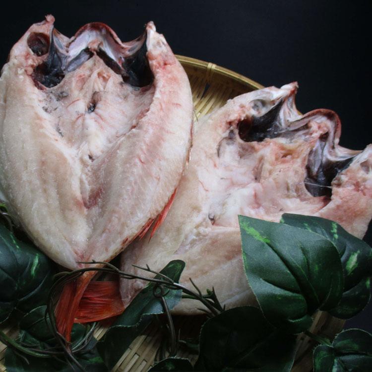魚介類 訳あり 魚貝類 商品 ふるさと納税 1293.大秀商店 2尾入り 超特大 のどぐろ