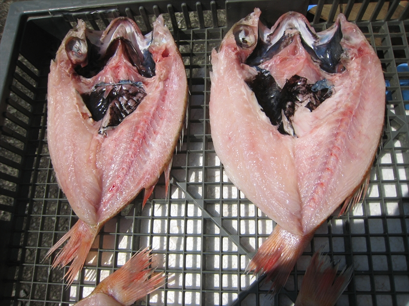 海の幸 魚介類 魚貝類天日 乾燥機のW干しシリーズ WEB限定 究極1 ふるさと納税 1221. 最高級 多田商店 専門店 先行予約 9月お届け 無添加のどぐろ天日干し 2枚