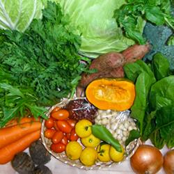 【ふるさと納税】C-292 清流高津川の水で育てた旬の野菜(3回)