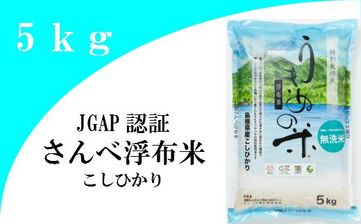 【ふるさと納税】米 無洗米 新米 コシヒカリ 島根 A025 さんべ浮布米(無洗米)(令和元年産) 5kg