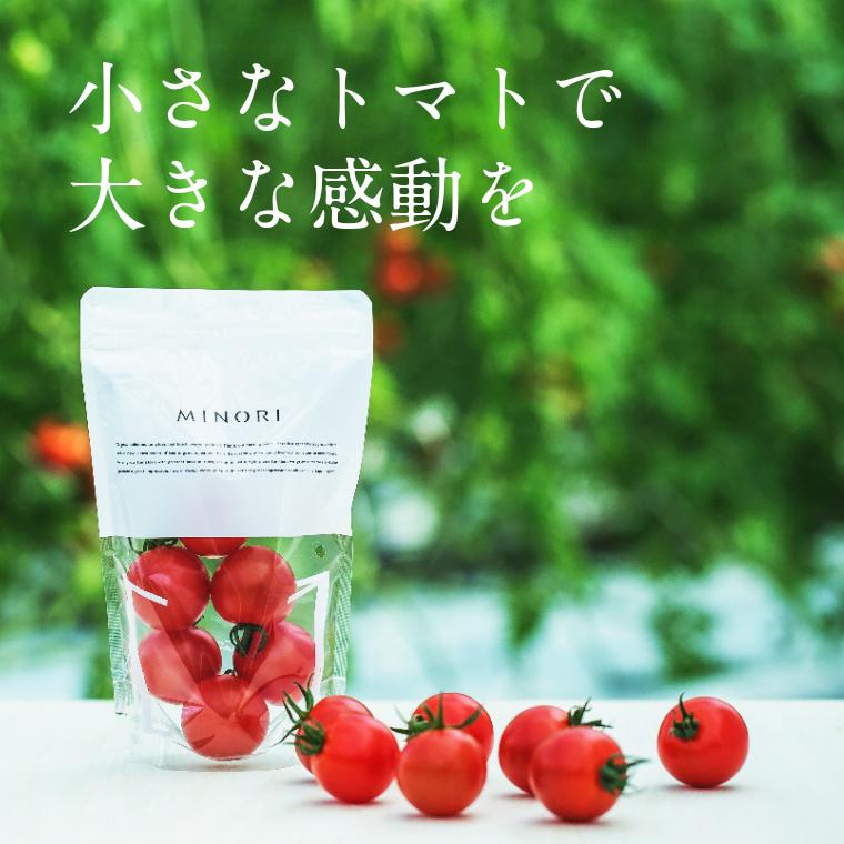 【ふるさと納税】 MINORI 6パックセット フルーツトマト トマト アイメック 甘い 【7月1日以降お申し込み分については12月以降発送予定】