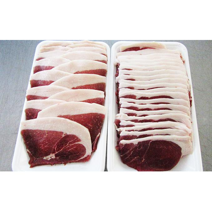 【ふるさと納税】天然猪食べ比べセット 【お肉】
