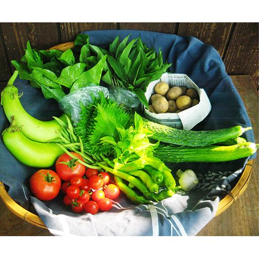 【ふるさと納税】旬の自然農野菜おまかせセットB 【野菜類・セット・詰合せ】
