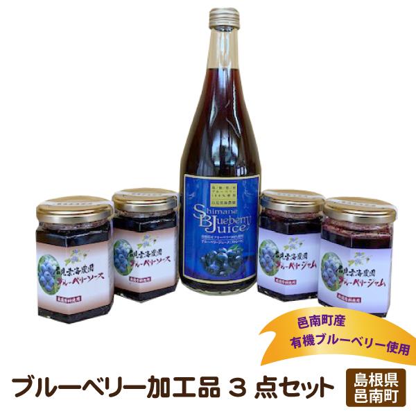 自社栽培した島根県邑南町産の有機ブルーベリー ふるさと納税 買取 有機ブルーベリー加工品3点セット 人気海外一番
