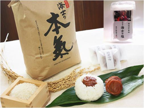 【ふるさと納税】海士の本氣米(5kg)梅むすびセット