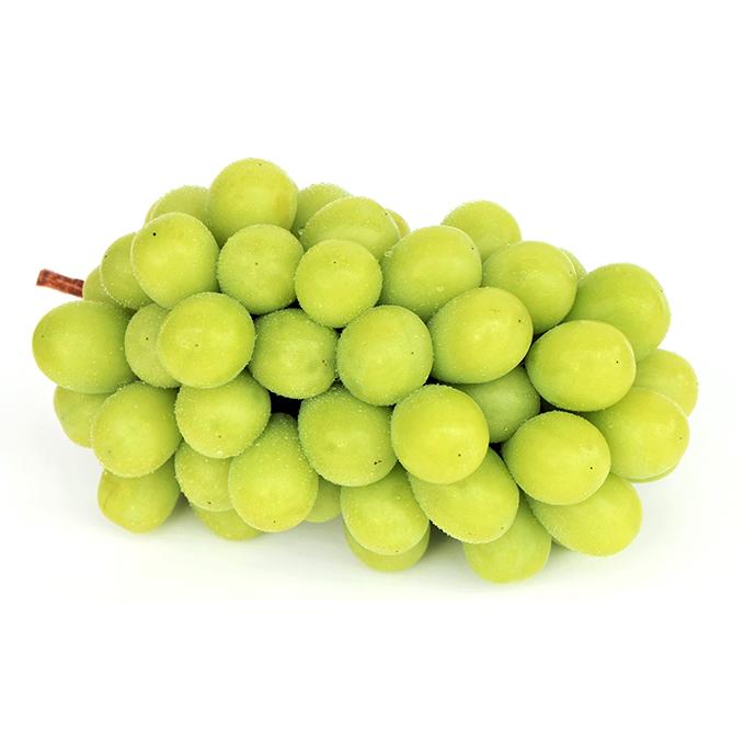 【ふるさと納税】小幸農園の岡山市産 シャインマスカット 2kg(3~4房入) 【果物類・ぶどう・マスカット・フルーツ・果物・ブドウ】 お届け:2020年9月中旬~2020年10月下旬