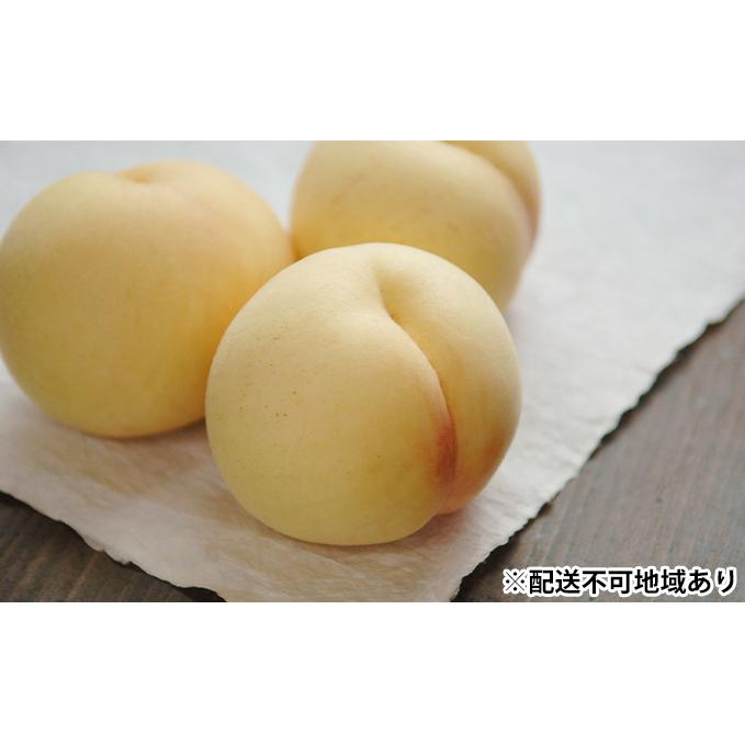 【ふるさと納税】●先行予約受付●岡山県産 白桃 (晩生種)約1.3kg(5~6玉) 【果物·もも·桃·フルーツ·果物類·白桃】 お届け:2021年8月上旬~2021年8月下旬