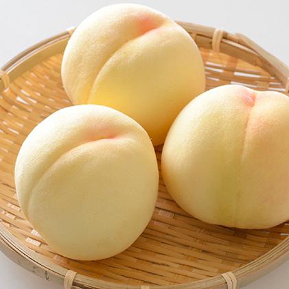 【ふるさと納税】晴れの国おかやまの白桃 3kg(8玉~10玉) 【果物・もも・桃・フルーツ・果物類】 お届け:2020年7月中旬~2020年8月上旬