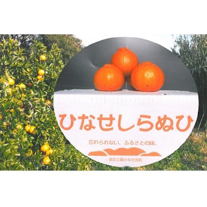 【ふるさと納税】0010-B-079 ひなせしらぬい 5kg(3月発送)