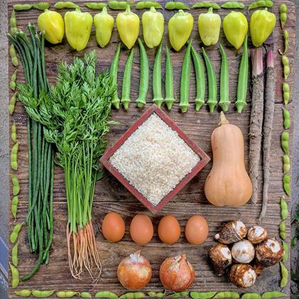 【ふるさと納税】無農薬・無化学肥料・自然栽培:旬の野菜(10品目)+「ひのひかり」玄米5kg(真空パック) 【ヒノヒカリ・玄米・お米・野菜・セット・詰合せ】 お届け:2020年11月上旬~2021年10月下旬