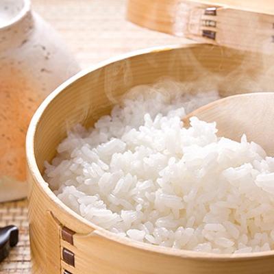 今ダケ送料無料 岡山県赤磐市 ふるさと納税 稚媛の里 お米 定番スタイル 慣行栽培米ひのひかり10kg