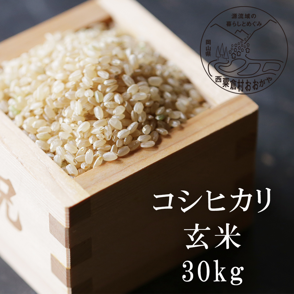 令和2年産 原生林の清水が生む希少なお米 ふるさと納税 セール特別価格 ハイクオリティ コシヒカリ 玄米30kg G25おおがや米