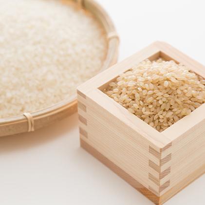 【ふるさと納税】安芸高田市産コシヒカリ『玄米』6kg 【お米・コシヒカリ】