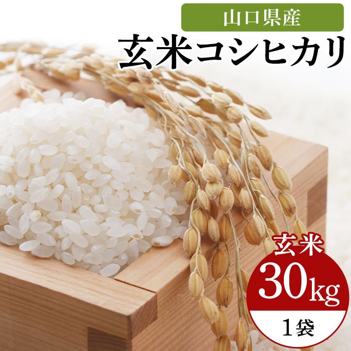 【ふるさと納税】J103宇部市小野『大山産米』 玄米30kg
