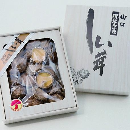 D-064【ふるさと納税】山口徳地産原木栽培乾しいたけ200g