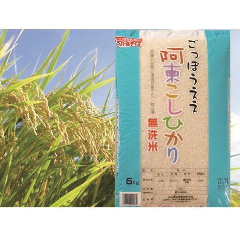 D-189【ふるさと納税】阿東こしひかり(無洗米5kg×2)