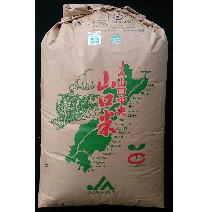 ※2020年10月以降新米にて発送 01B-014【ふるさと納税】鳴滝清流米玄米60kg