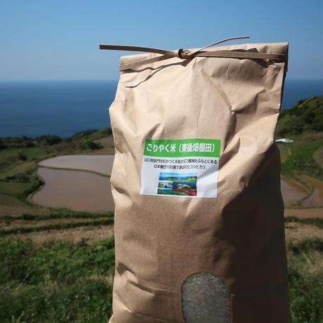 こしひかり玄米10kg 全商品オープニング価格  ふるさと納税 ごりやく米 玄米10kg 新作入荷 東後畑棚田こしひかり 1233